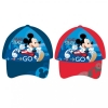 grossiste destockage  habillement Casquettes mickey